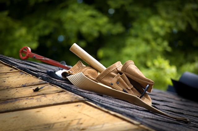 Protection at Height with Professional Roofers Insurance
