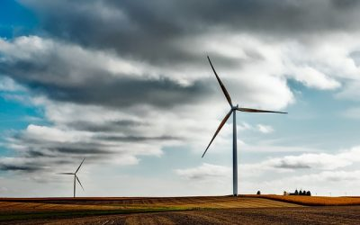Why Do You Need Wind Farm Insurance?