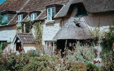Shop Around for Affordable and Reliable Thatched Home Insurance